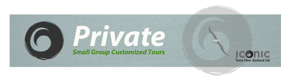 Cruise Banner 2_Private