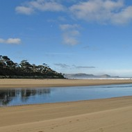 Iconic-Tours-Catlins-07.jpg